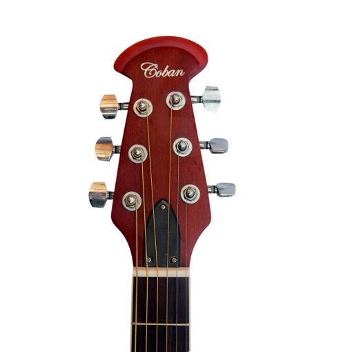 Coban Electro Acoustic Matt Black with Leaves Roundback with padded gig bag